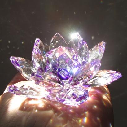 https://cdn.brasilesoterico.com/imagens_produtos/md_204-0-210224170258000000-flor-de-lotus-de-cristal-brilhante-11-cm---6-opcoes-cores.jpg
